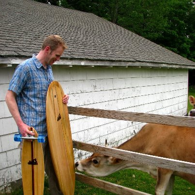surfboard-and-cows.jpg